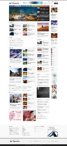 日本語有料テーマトップクラスのTCD/opinion